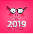 greeting card for 2019 new year with pig face vector image