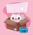 pet shop cat in box with fish can food animal vector image vector image