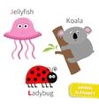 Letter J K L Jellyfish Koala Ladybug Zoo alphabet vector image