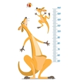 Meter wall with two funny kangaroo vector image vector image