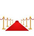 red carpet celebrity background entrance vector image