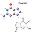 Chemical structural formula and model of guanine vector image