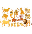Different kind of lion and tiger vector image