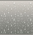 drops of water on a grey background vector image vector image