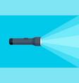 flashlight torch hand pocket vector image