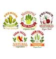 Fresh farm vegetables and herbs cartoon symbols vector image