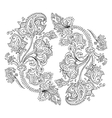 Hand Drawn Paisley ornament vector image vector image