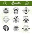 set medical marijuana logos cannabis badges vector image