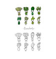 set with cute cartoon succulents vector image vector image