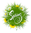 inscription hello spring on background with spring vector image