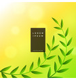 nature leaves green background vector image vector image