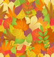 seamless with autumn leaves on white background vector image vector image