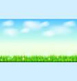 summer landscape background green natural grass vector image vector image