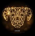 abstract polygonal tirangle animal dog neon sign vector image vector image