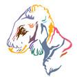 colorful decorative portrait dog bedlington vector image vector image