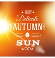 Delicate Autumn Sun Abstract Background vector image vector image