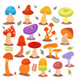 different cartoon mushrooms isolated on white vector image
