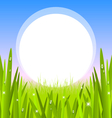 morning grass with copy space vector image vector image
