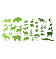 north south america eurasia wild animal vector image vector image