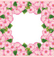 pink alcea rosea border - hollyhocks vector image vector image