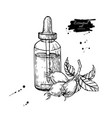 rosehip essential oil bottle with berry hand drawn vector image vector image