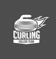 vintage curling labels and design elements vector image vector image