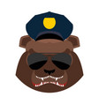 angry bear in police cap aggressive grizzly head vector image vector image