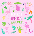 childish tropical summer design cute flamingos vector image vector image