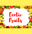 exotic tropical fruits poster for market vector image vector image
