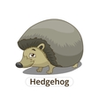 Forest animal hedgehog cartoon vector image vector image