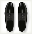 Pair of mens shoes in classic style vector image