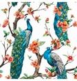 Watercolor peacock pattern vector image