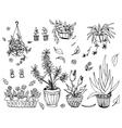 Pot plants set hand-drawn design elements vector image