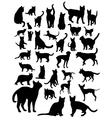 Cat and Dog Silhouettes vector image