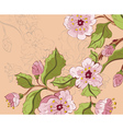 Colored Sketch of Sakura Branch2 vector image vector image