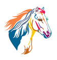 colorful decorative horse 13 vector image