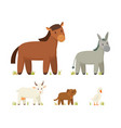 donkey and horse icons set vector image vector image