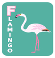 F for flamingo alphabet cartoon animal for vector image