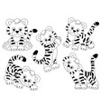 set of cute tigers vector image vector image
