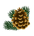 single pinecone and twigs of pine tree isolated on vector image