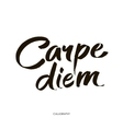 Carpe diem In latin means Catch the moment Hand vector image vector image