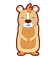 line color cute and smile bear wild animal vector image vector image