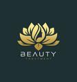 lotus flower beauty salon and hair treatment logo vector image