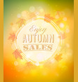 enjoy autumn sales background with autumn leaves vector image vector image