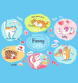 funny cats poster with images of everyday life vector image