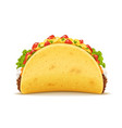 tacos with meat and vegetable vector image vector image