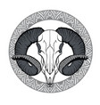with goat skull vector image vector image