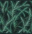 fir background seamless vector image