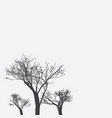 gray background with three trees vector image