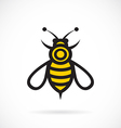 image of bee design vector image vector image